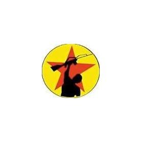 ANTI FLAG 766 chapa